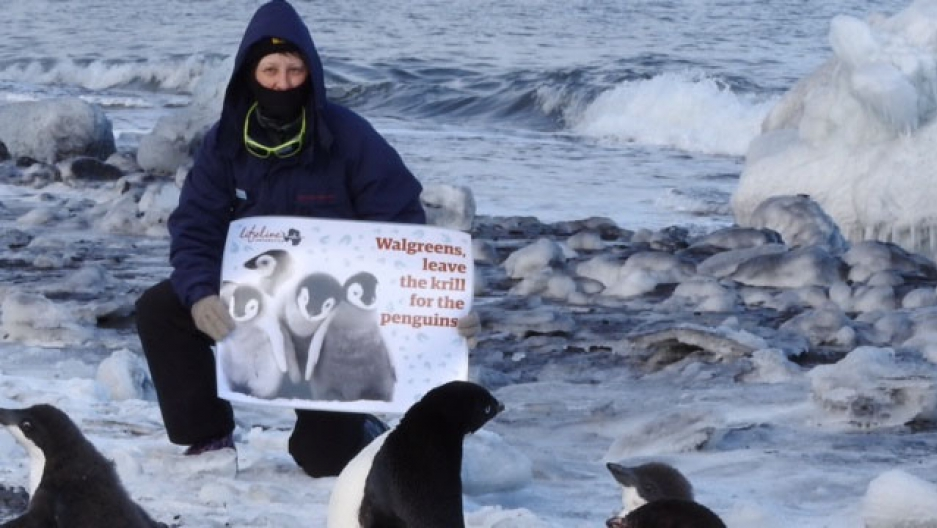 Protesters with the group Lifeline Antarctica traveled to the edge of the world in February. Protesters with the group Lifeline Antarctica traveled to the edge of the world in February, 2016. Protesters with the group Lifeline Antarctica traveled to the e